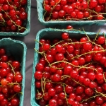 Red Currants | Did You Know…