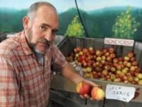Saratoga Apple | An Apple A Day