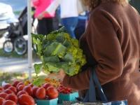 Saratoga Farmers' Market Celebrates Last Gasp of Summer