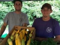 Fresh Take Farm | A Fresh Take On Things