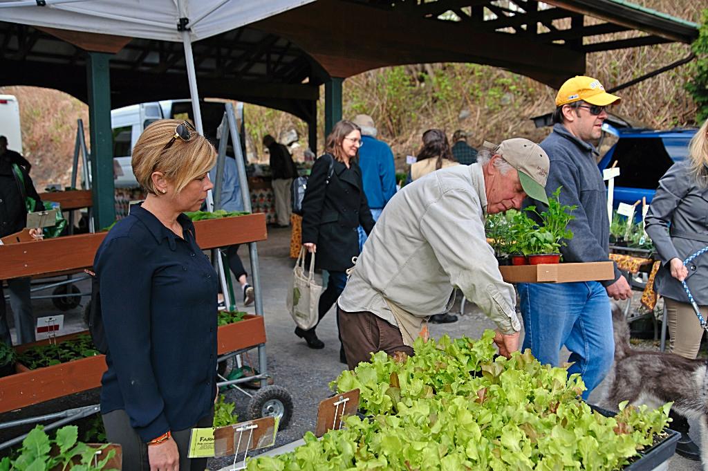 becoming vendor saratoga farmers market local produce upstate new york