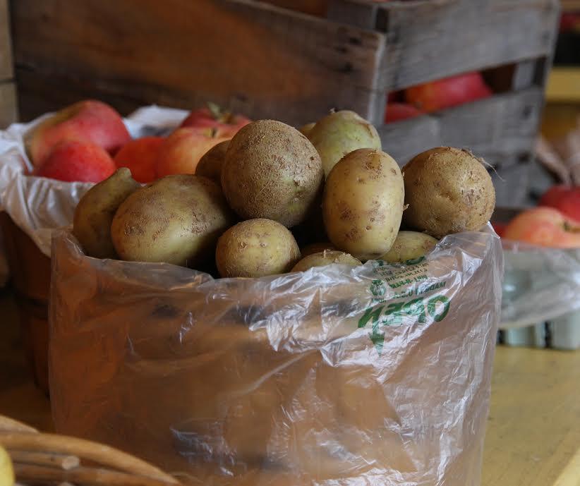 The Extraordinary Ordinary Potato