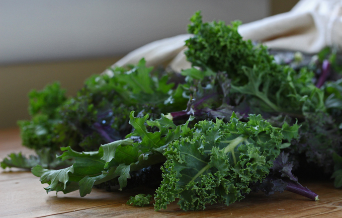 A Winter's Salute to Kale