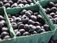 Celebrating the sweet spot of summer with a Blueberry Jam-boree