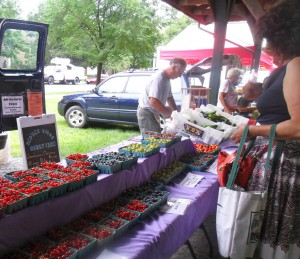 Scotch Ridge Berry Farm