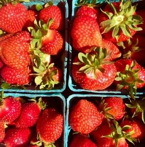 Denison Farm Strawberries