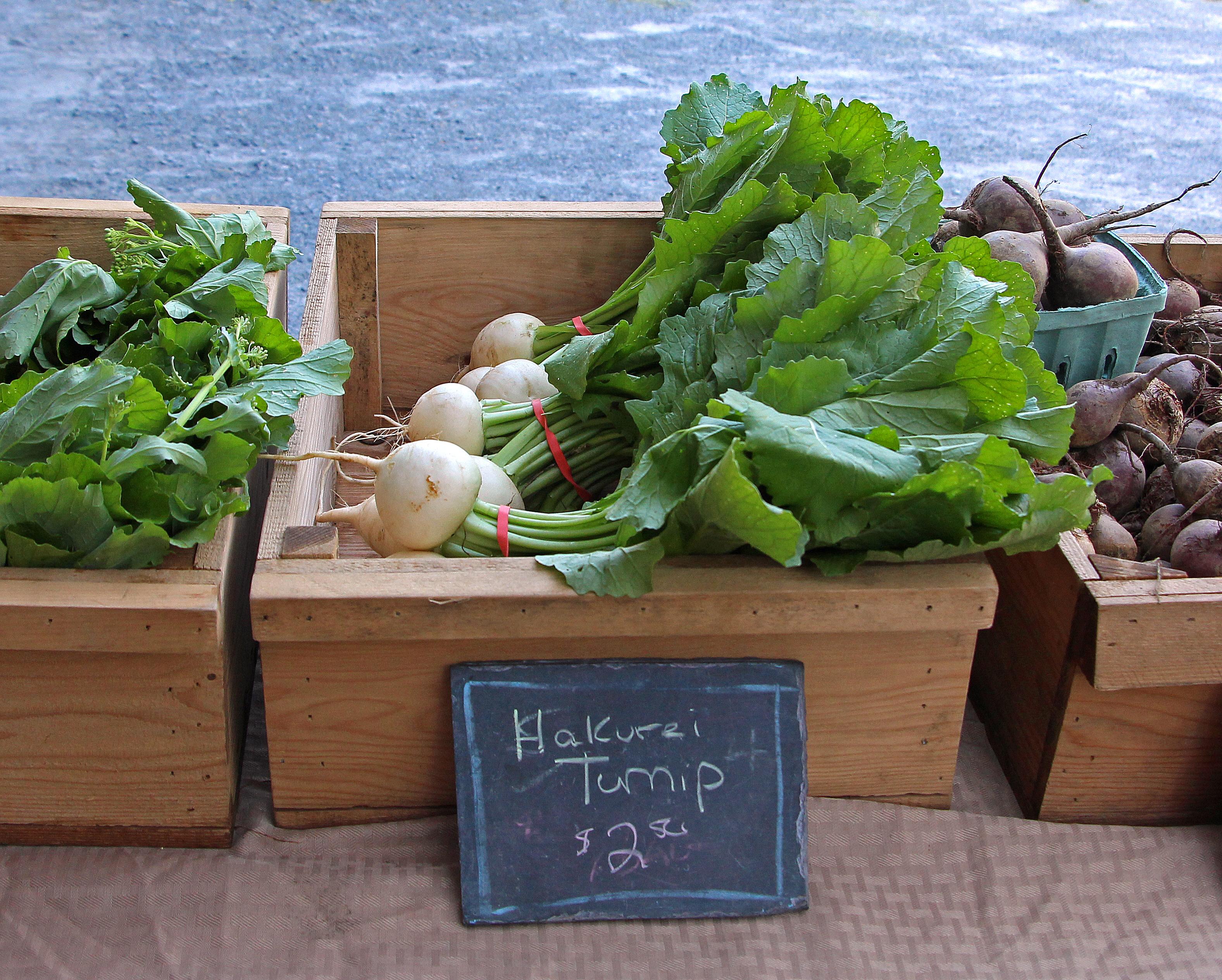 Hakurei Turnips at Saratoga Farmers' Market