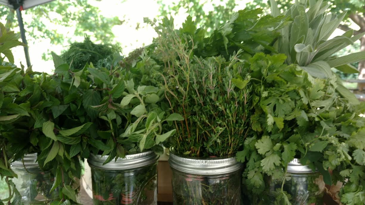 And what about parsley, sage, rosemary, and thyme?