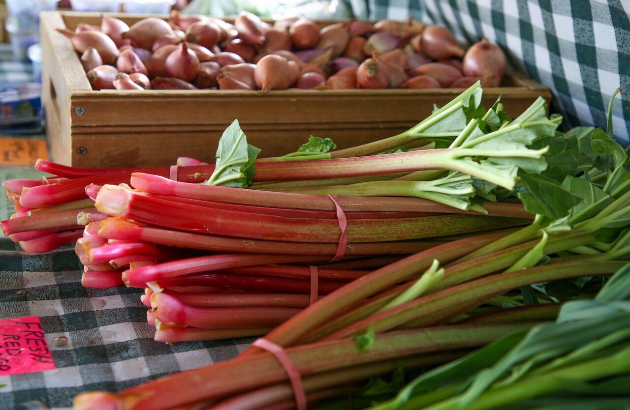 Rhubarb offers a tart, yet juicy taste of early summer