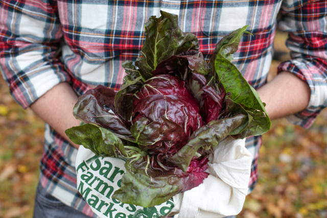 Saratoga Farmers' Market Grows with Changing Times